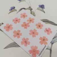 美女櫻-淡粉紅-押花花材