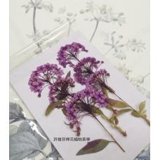 小手球串-紫色-押花花材