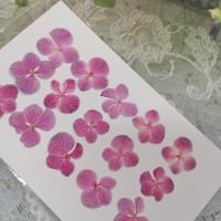 繡球花-粉紅色-押花花材