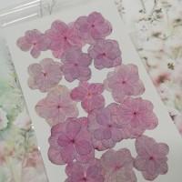 繡球花-押花花材-複瓣淺紫粉紅色