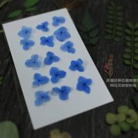 網繡球花-300色-押花花材