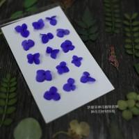 網繡球花-301色-押花花材