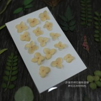 網繡球花-302色-押花花材