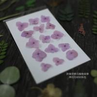 網繡球花-303色-押花花材