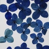 網繡球花-518色-押花花材