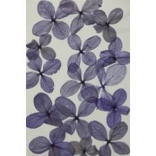 網繡球花-520色-押花花材