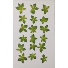 金翠花花朵-綠色-押花花材