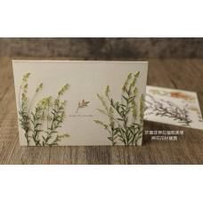 星點草-檸檬綠色-押花材料