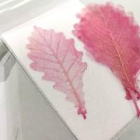 網葉-橡樹葉-膚粉紅-押花材料