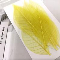 網葉-金剛葉-黃色-押花材料