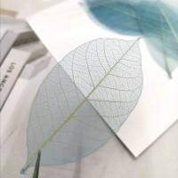 網葉-金剛葉-湖藍色-押花材料
