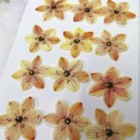 伯利恆之星-淡黃紅色-押花花材