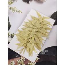 花丘葉-淡黃白色-押花花材