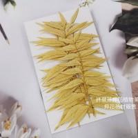 花丘葉-淡黃色-押花花材