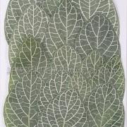 白紋網葉-綠色