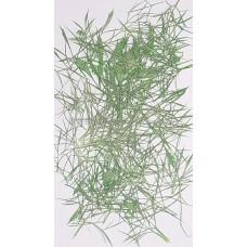 細草-綠色