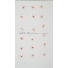 翠珠花-淡粉紅色