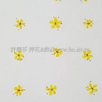翠珠花-黃色