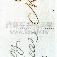 金蔥紙進口貼紙268