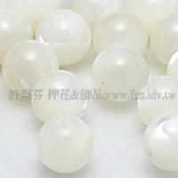 816白色貝殼-圓珠-6mm-10個